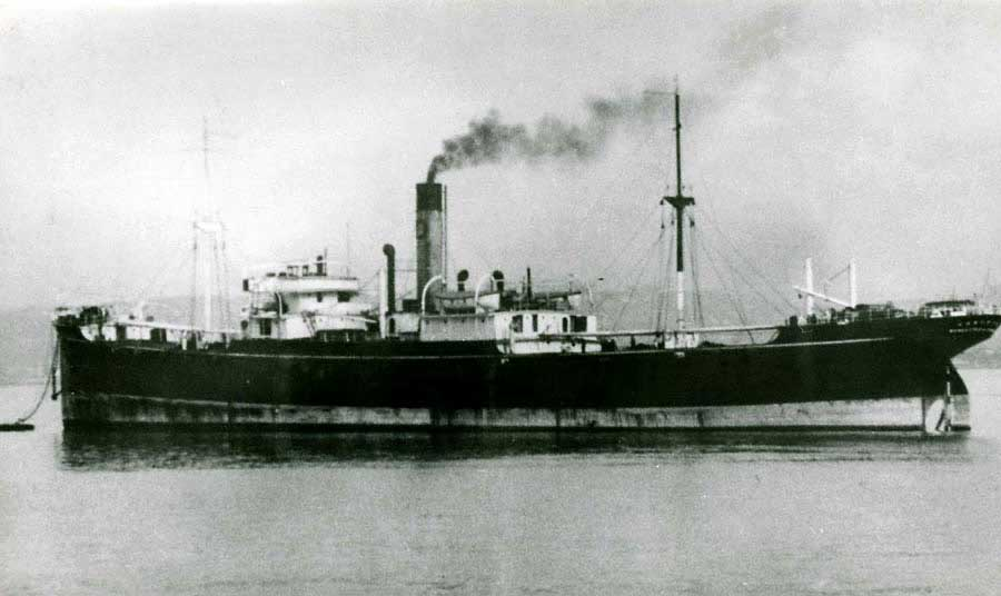 Steam Ship - Usworth
